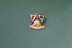 Bowling Club pin
